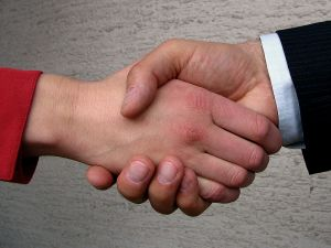 Shake Hands Handshake Meeting Networking