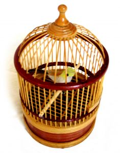 Canary Cage Early Warning