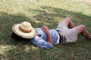 Sleeping Nap Grass Lazy